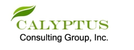 Calyptus Consulting Group logo